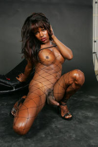 Black Tranny in fishnet and nice tits