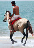Nude horseback riding twink on the waterfront