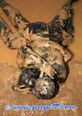 Messy mudfighting latex freaks.