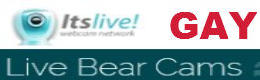 It's Live Gay Bears