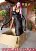 Mail bride delivered in a box ready for your pleasures